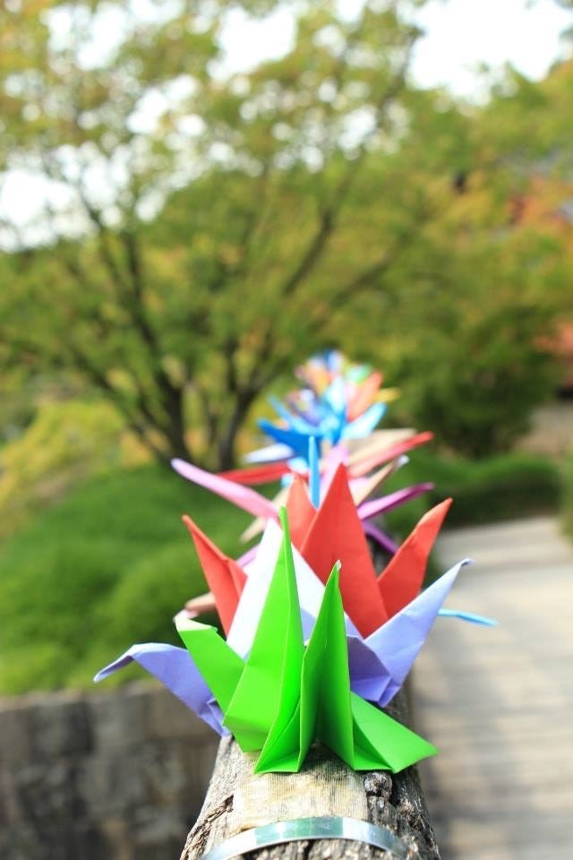Le Plus Grand Jardin Japonais D Europe Se Trouve A Hasselt Les